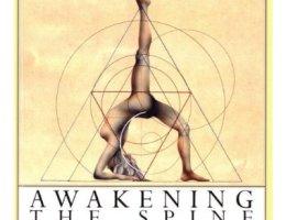 Awakening the spine par Vanda Scaravelli