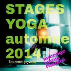 sticker-stages-rentree2014