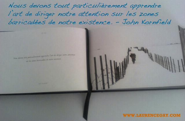 citation_kornfield