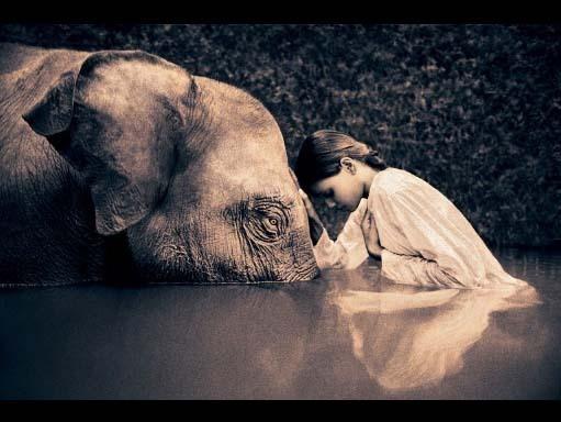 elephantandlilgirl