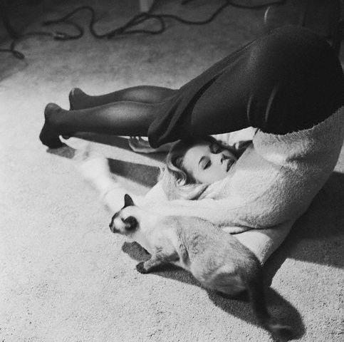 Jane Fonda Doing Yoga Beside her Cat